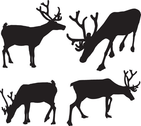 traced: black traced images of reindeer or deer in different positions Illustration