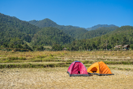 Camping tent in the rice field at Pai, Thailand Stock Photo