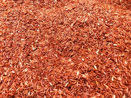 Red jasmine rice in the bucket, This is the local rice of Chiangrai province Thailand