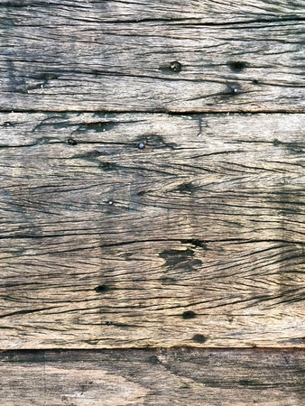 Wooden knotted wall with nails as the background texture Reklamní fotografie
