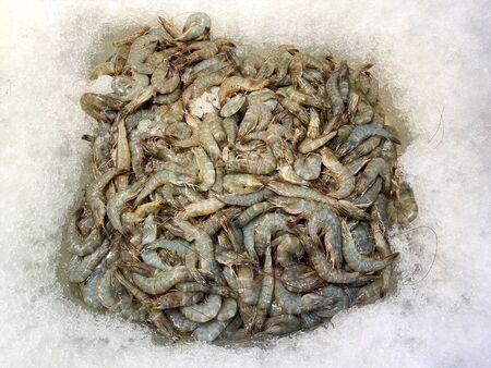 Fresh shrimp on ice at the supermarket for sell  Stock fotó