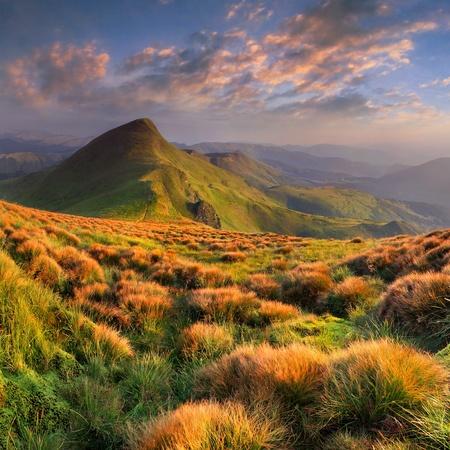 Paisaje hermoso verano en las montañas. Salida del sol Foto de archivo