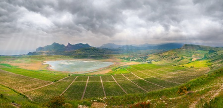 panorama of vineyards with a high rock photo
