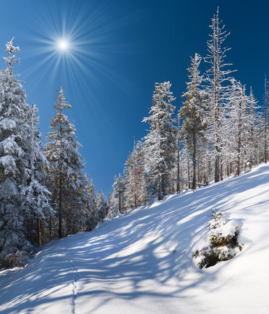 gleam: Beautiful winter landscape in the alp mountains Stock Photo