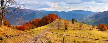 Colorful autumn landscape in the alp mountains photo