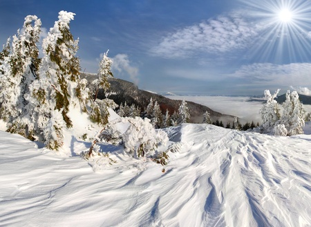 Beautiful winter landscape in the alp mountains photo