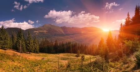Summer landscape in the mountains. Sunrise photo