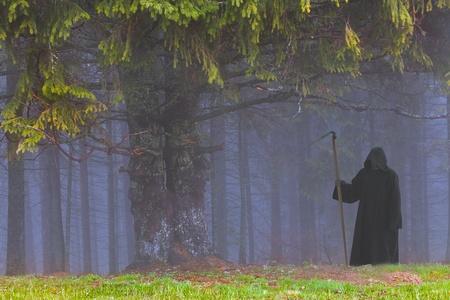 Grim Reaper in the foggy wood photo