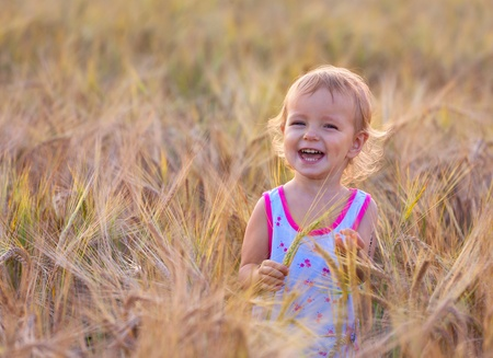 adorable two-year old baby walking in the fild of wheat  photo