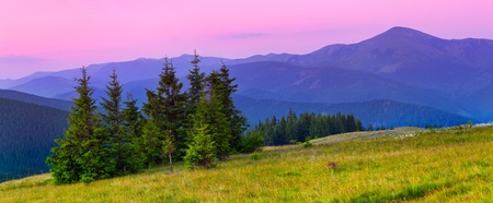 Beautiful summer landscape in the  mountains. Sunrise Stock Photo - 13178157
