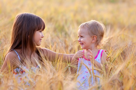 adorable sisters in the field of wheat photo