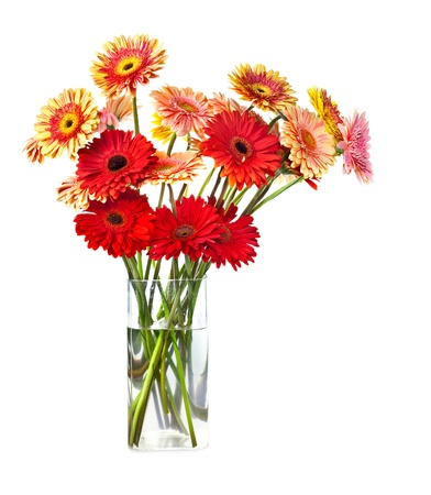 Bouquet of gerberas flowers in glass vase isolated over white background photo