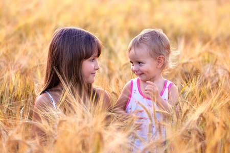 Two adorable sisters in the field of wheat photo