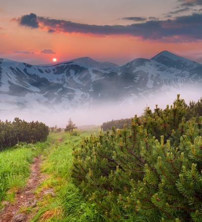 山の中の美しい春夕日
