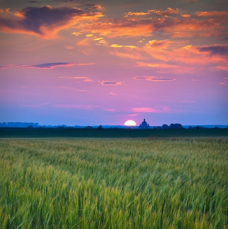 Beautiful summer sunset in the village with church and field of wheat Stock Photo - 13484269