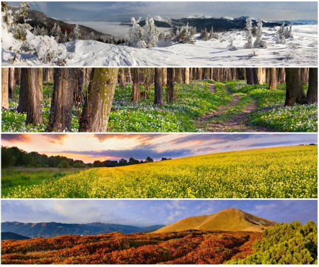 fall scenery: Set of the 4 seasons landscape for banners Stock Photo