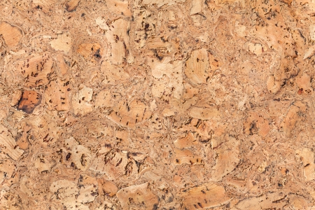Large corkboard texture or background photo