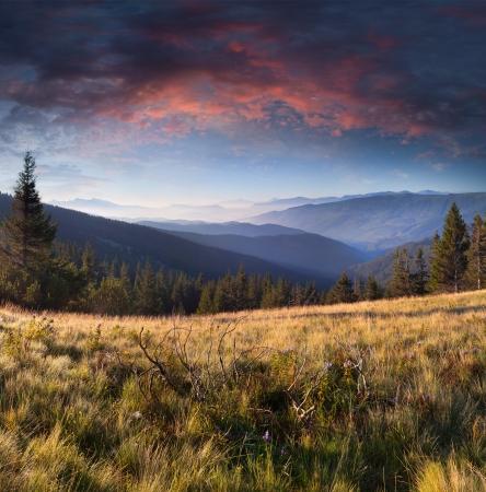 the clear sky: Paisaje de verano en las montañas. Salida del sol Foto de archivo