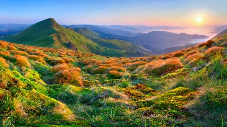 Beautiful summer landscape in the mountains. Sunrise photo