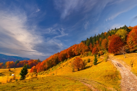 autumn road: Colorful autumn landscape in the mountains
