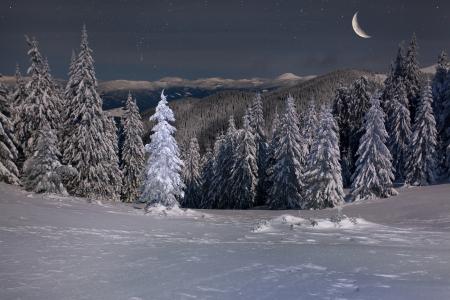 night moon: Paisaje hermoso del invierno en las monta�as por la noche con las estrellas y la luna