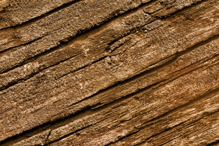 pasteurized: Pasteurized High Resolution Old Natural Wood Textures