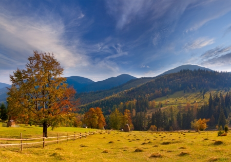 Colorful autumn landscape in the mountains Stock Photo - 15256326