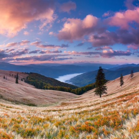 Colorful autumn landscape in the mountains. Sunrise photo