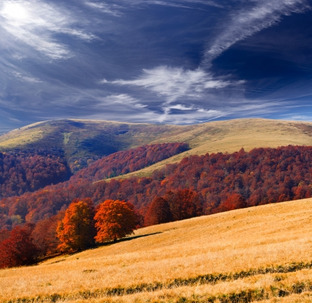 Colorful autumn landscape in the Carpathian mountains photo
