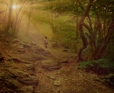 mystical forest: Little girl walking on the foggy woods. Vintage stylized Stock Photo