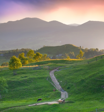 Beautiful summer landscape in the mountains village. Sunset Stock Photo - 15473202