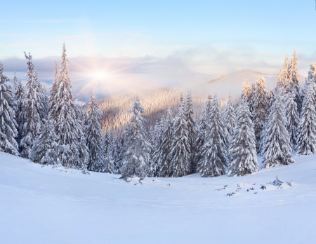 snowing: Beautiful winter landscape in the mountains. Sunrise Stock Photo