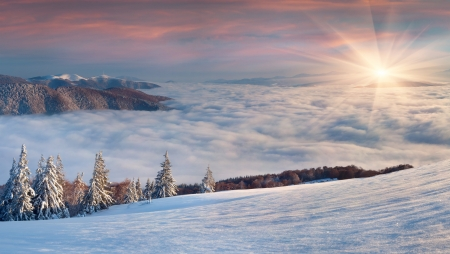 gleam: Beautiful winter landscape in the  mountains. Sunrise