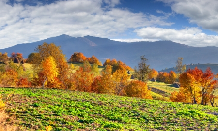 Colorful autumn landscape in the mountains photo