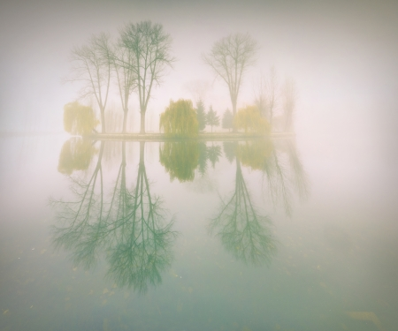 Foggy morning landscape in the autumn park near the lake. Vintage stylization photo