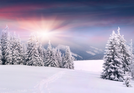 landscape: Beautiful winter landscape in the mountains. Sunrise Stock Photo