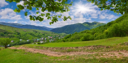 Panorama of the summer mountains with fresh green leaves photo