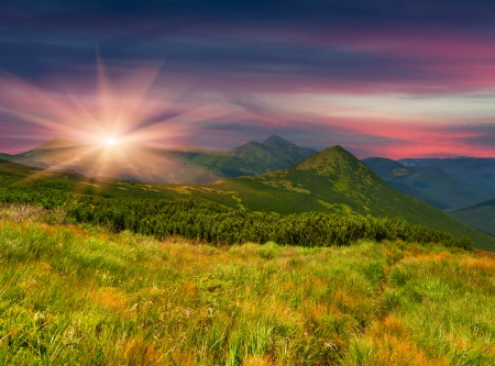 sunrise field: Colorful summer landscape in the mountains Stock Photo
