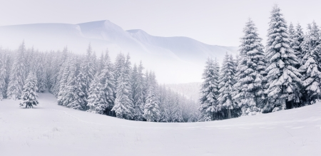 Panorama of the foggy winter landscape in the mountains photo
