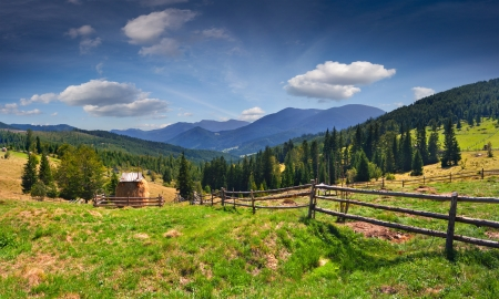 haymaking: Beautiful summer landscape in the mountains at summer
