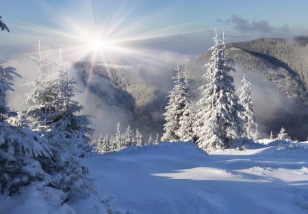 christmas landscape:  Beautiful winter morning in the mountains