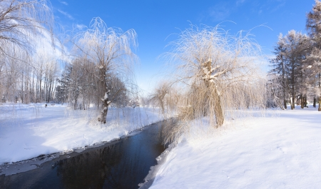 Beautiful winter landscape in the city park Stock Photo - 17220515