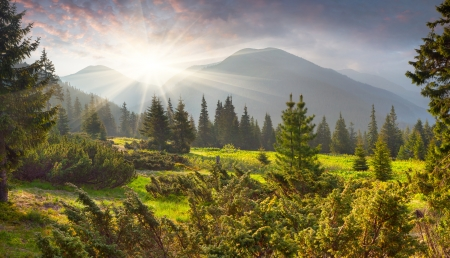 panoramic nature: Beautiful summer landscape in the mountains. Sunrise Stock Photo