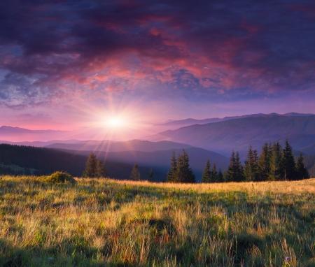 Beau paysage du matin dans les montagnes Banque d'images - 18003900