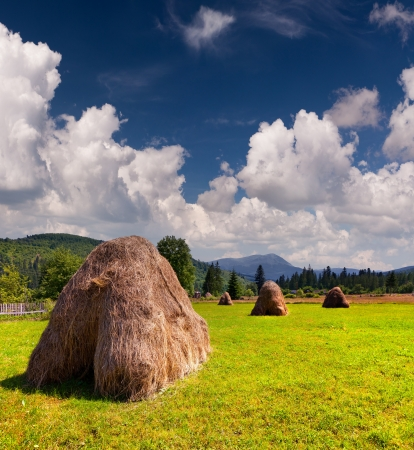 haymaking: Hay in a village in the mountains at summer