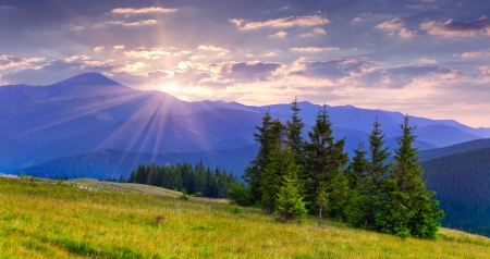 Beautiful summer landscape in the Carpathian mountains. Sunrise