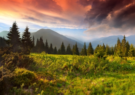 Dramatic summer sunset in the Carpathian mountains. Ukraine, Europe.