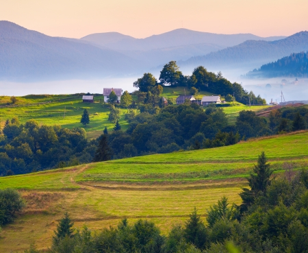 Colorful summer landscape in the Carpathian village. Ukraine, Europe photo