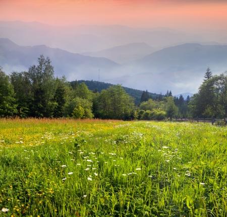 Beautiful summer morning in the Carpathian mountains photo
