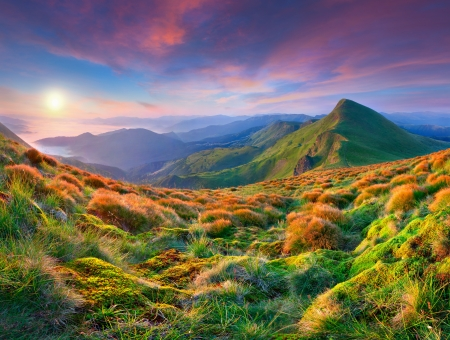 Colorful morning sunrise in the mountains